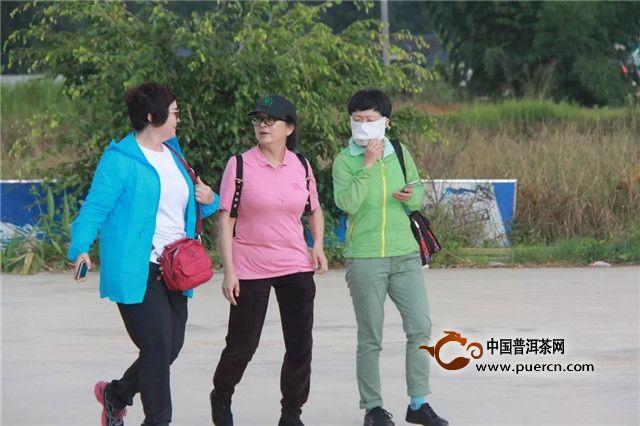 【六山新闻】云南省女企业家协会赴六大茶山参观考察