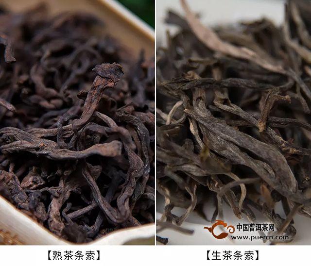 【章朗:纯正勐海味】千堆古树熟茶发酵计划第二十期