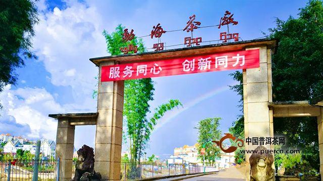 勐海茶修中心3月大益职业茶道易武正山班即将开班