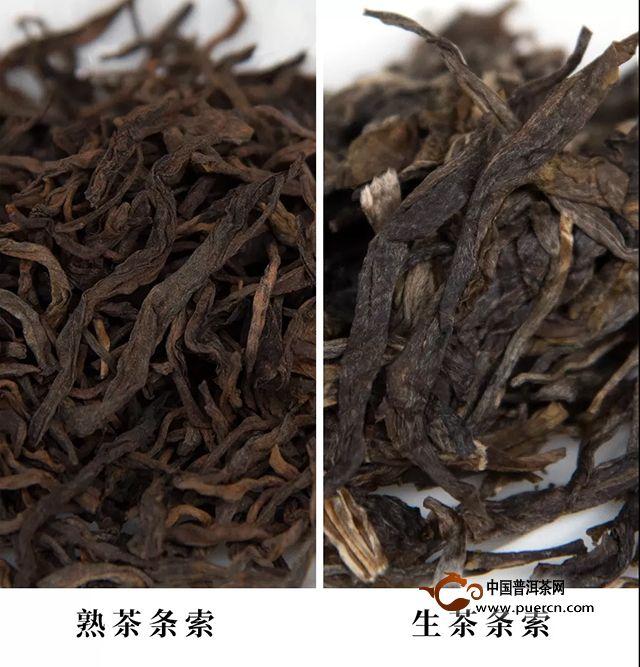 【茶中致和者:勐宋曼吕】书院熟茶千堆古树熟茶发酵计划第二十一期