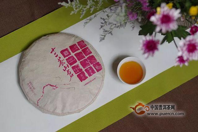 福元昌:一年要是不喝春茶,这个春天就像没有来过