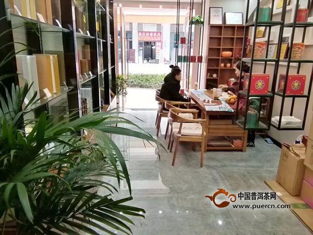 """云元谷每日熟茶丨""""大发酵""""之【鲜叶篇】"""