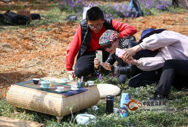 以茶结缘,共享芬芳|一场绽放在梨花园里的公益茶会