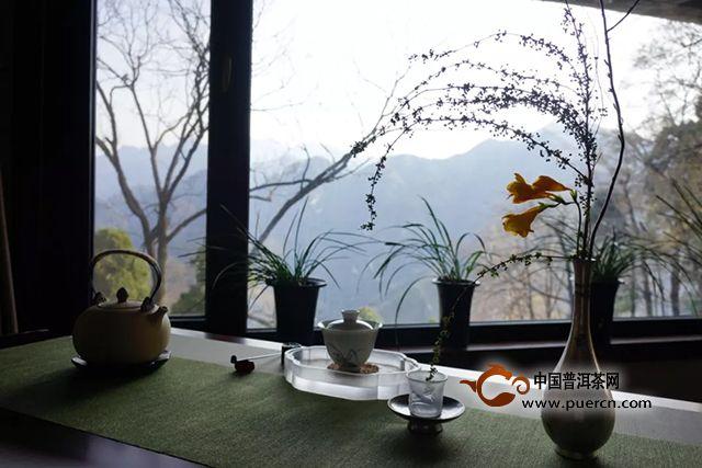 大益终南山禅茶会:想起春天里那场茶事,梅花便落满了南山