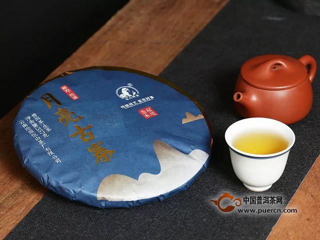 佤山映象|以茶聚力,精准扶贫