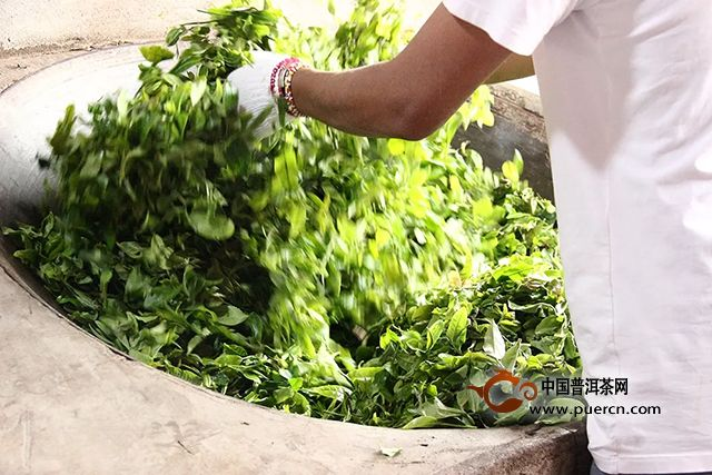 海湾茶业:探索的旅程永无止境—2019年茶山行