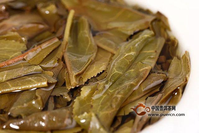 海湾茶业:『Tea-新品』2019年 9948生饼