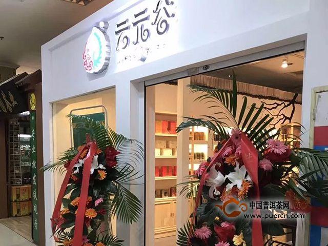 云元谷每日熟茶丨春茶上市,为什么还要喝熟茶?