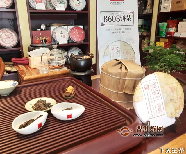 """【茶会集锦】""""品味岁月,经典回归""""下关沱茶8603全国品鉴会(三)"""