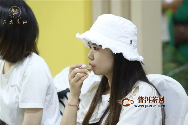 六大茶山:北京茶博会Day 1,群英荟萃