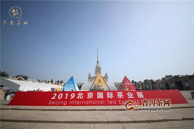 六大茶山:北京茶博会Day 2, 小茶人的盛会