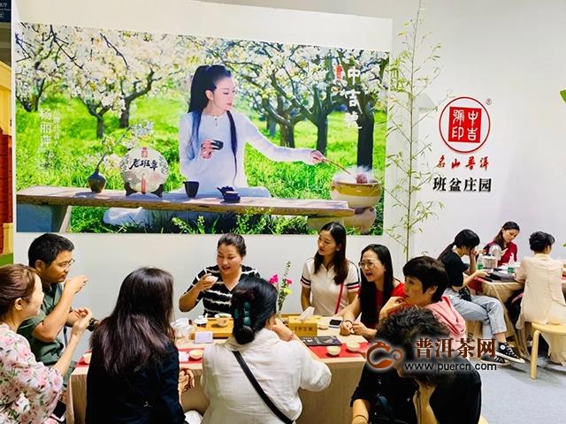 深圳茶博会盛大开幕|中吉号茶业亮点超多  人气爆棚!