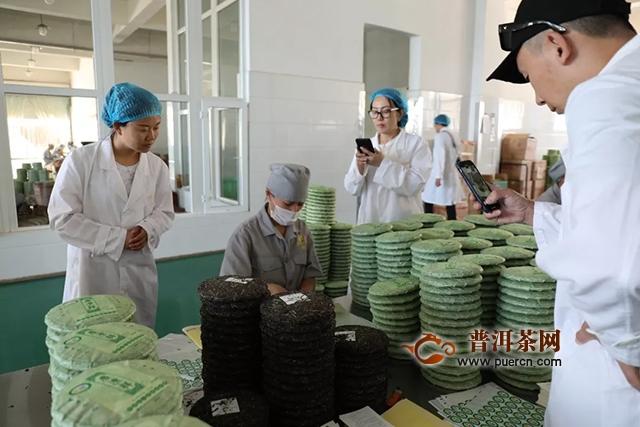 昆明七彩云南庆沣祥茶业:京滇5000里,叹绝茶山行