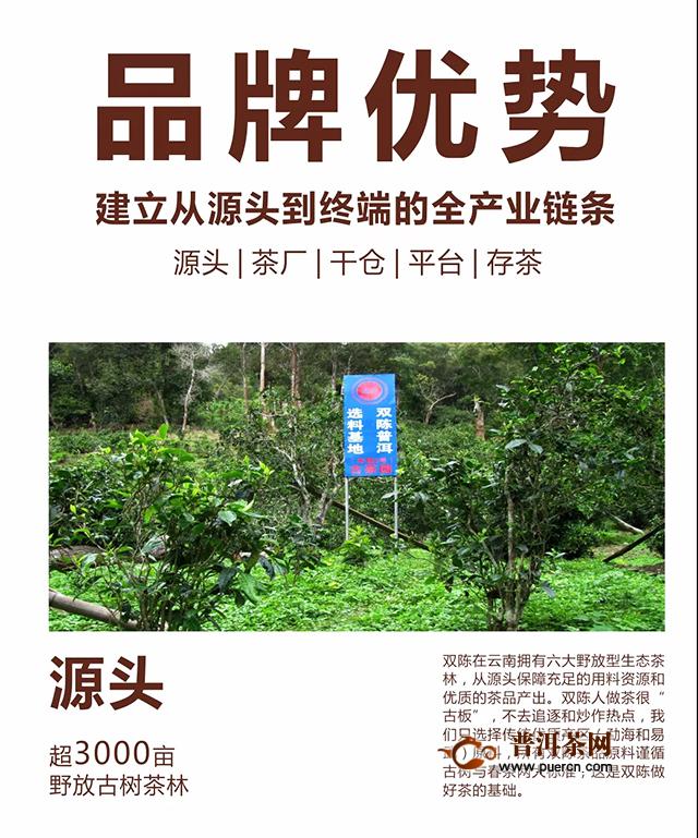 西安茶博会第二天, 双陈实力品牌用产品赢得信任!