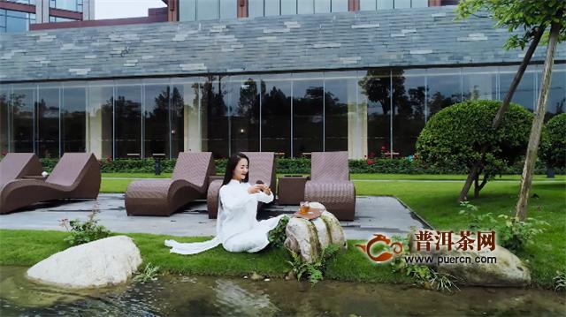 合和昌:勐海茶王节,带你恋上勐海味