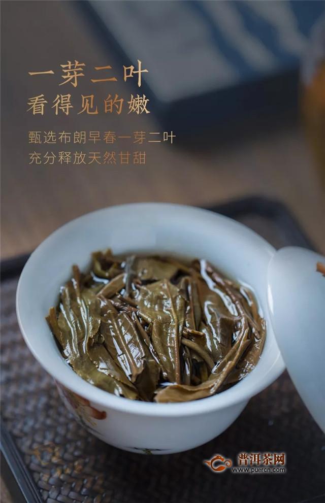 合和昌2019普洱思享生茶 与思想者同行,茶是极好的媒介