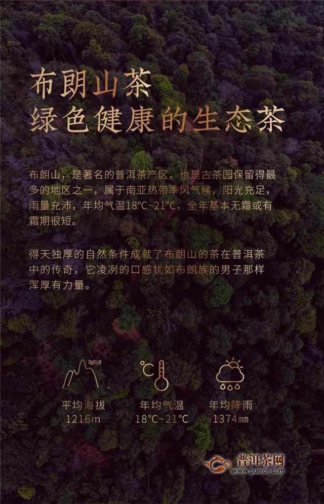 """合和昌2019普洱思享熟茶 茶与""""书""""的珠联璧合"""