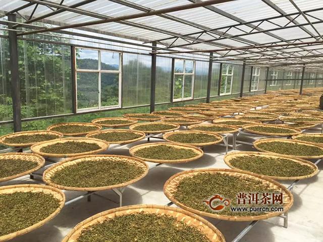 """普洱茶行业首个品牌""""美寿""""荣耀之作——普秀6年陈香易武正山正式上市"""