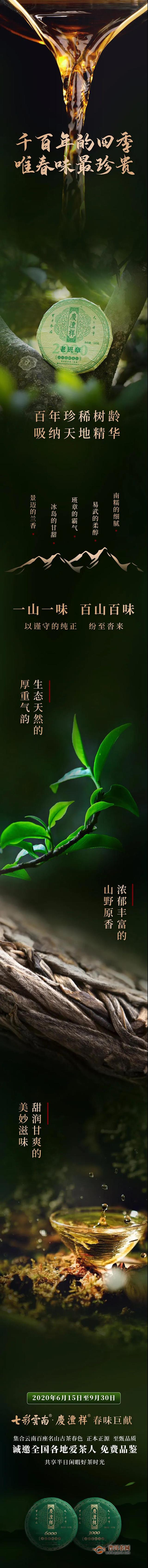 七彩云南庆沣祥全民品鉴招募,千百年的四季唯春味最珍贵