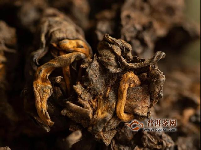吉普号茶山黑话186期:从边角料到茶珍品,老茶头靠什么逆袭翻盘?