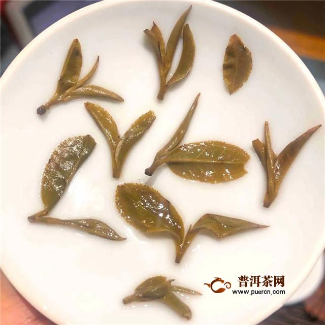 彩农茶:猫耳朵、豆芽茶